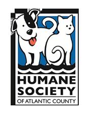 Humane Society of Atlantic County: Atlantic City, NJ: Adopt